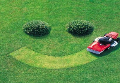 Lawn Care Tips For a Healthy Lawn (and Wallet)