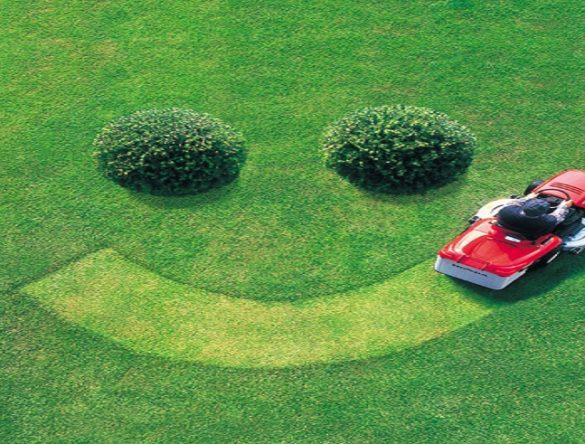 Man mowing lawn to show a smiley face consisting of two bushes