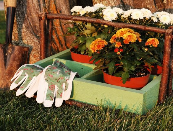 7 Fall Gardening Secrets