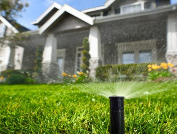 How To Efficiently Water Your Lawn