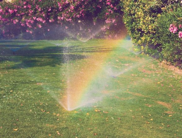 Multiple sprinklers watering grass and refracting to show a rainbow