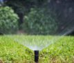 Sprinkler head watering the grass of a backyard