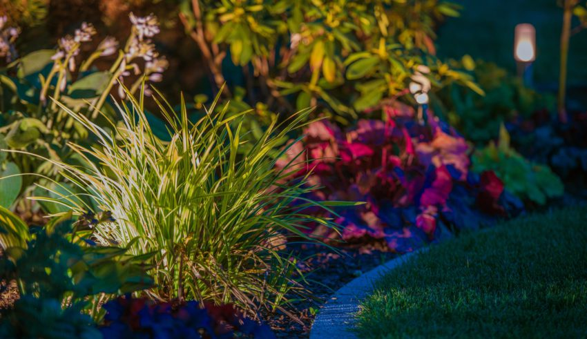 Top Benefits of Proper Landscape Lighting