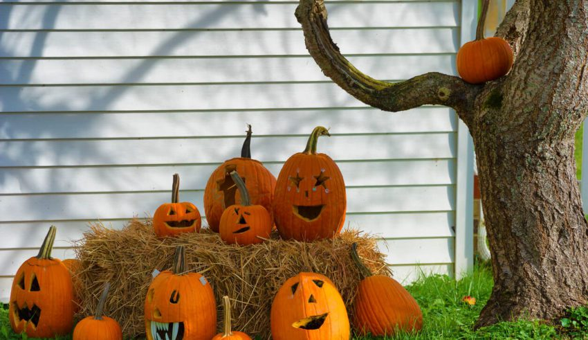 Pumpkins on hay decorating home